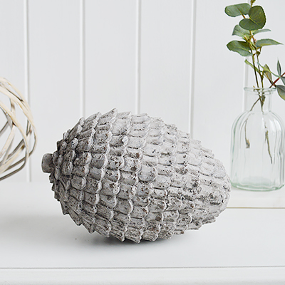 Large vintage white fir cone