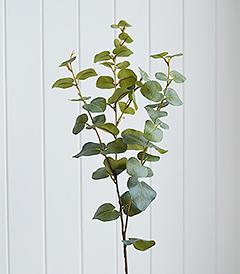 Artificial Eucalyptus Realistic