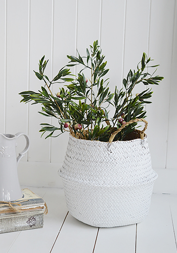 Olive tree branches in Kingston white basket