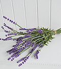 Bunch of tied artificial Lavender stalks realistic
