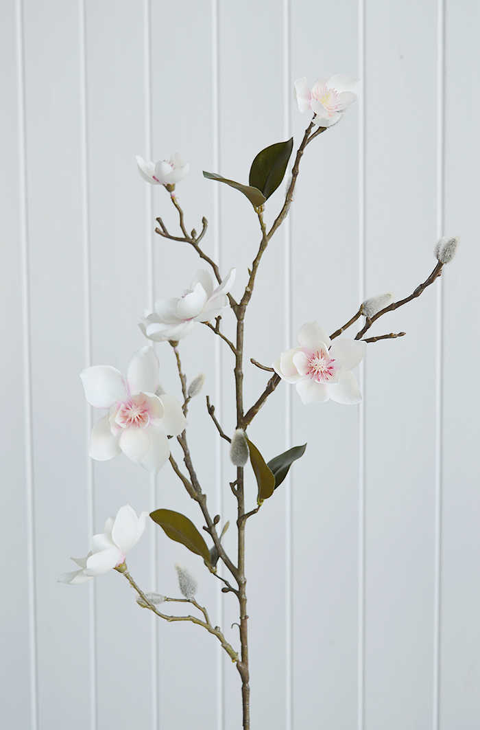Realistic Magnolia single  branch with leaves and buds