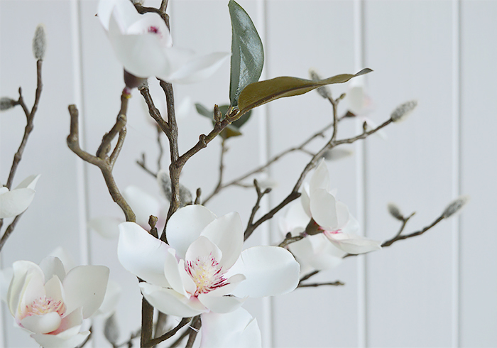 Realistic Magnolia branches with leaves and buds photograph to show details