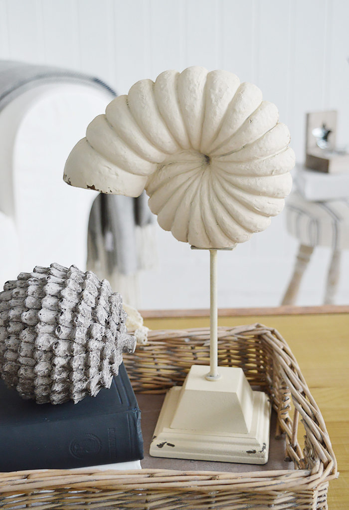 Decorative Shell on stand for coffee table decor in a coastal living room from The White Lighthouse Furniture