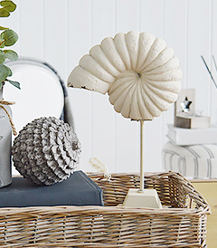 A decorative shell on a stand for coffee table decor from The White Lighthouse Coastal furniture