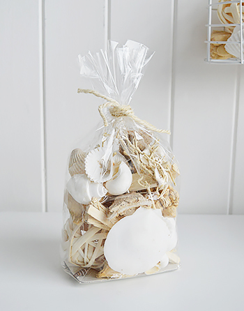 sea shells and driftwood for coastal interiors