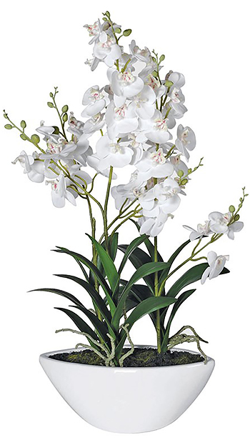 Large artificial white orchids in pot for display