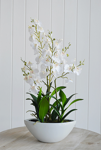artificial white orchids in white ceramic pot, Lovely dispay for the hall