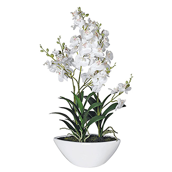 Artificial White Orchids in pot