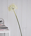artificial white Allium Superb